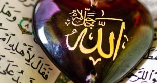 La Miséricorde d'Allah – Cheikh Zakaria Seddiki